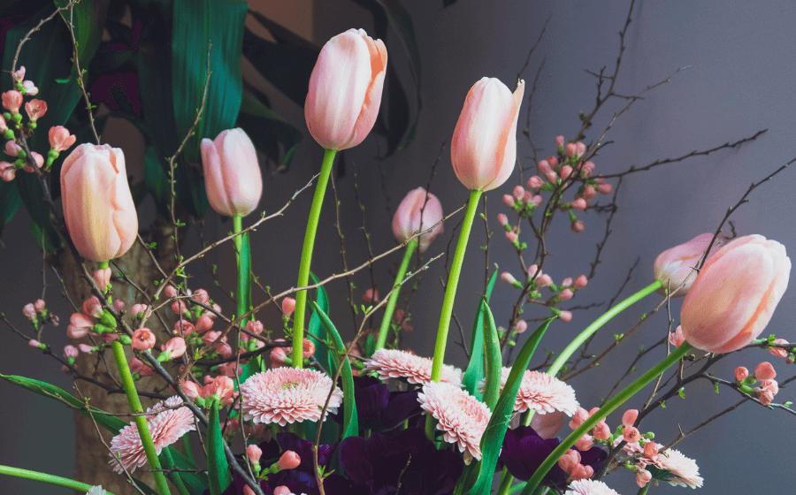 Agora verwelkomt de week van de tulp