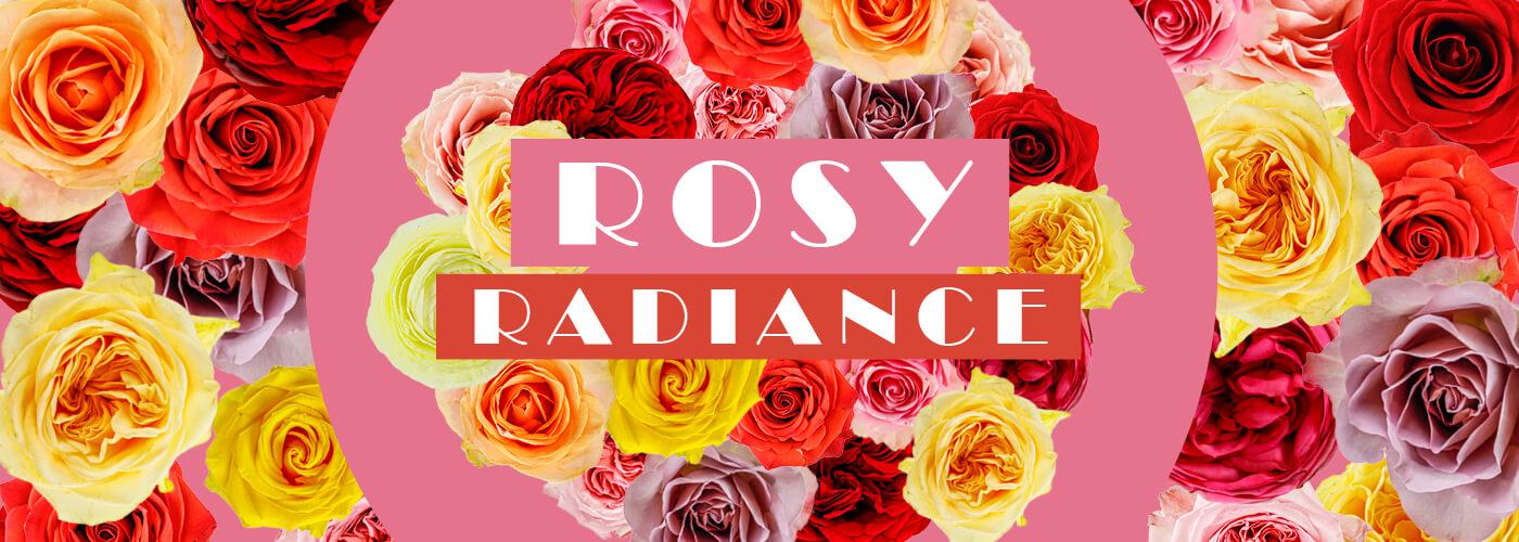 ROSY RADIANCE