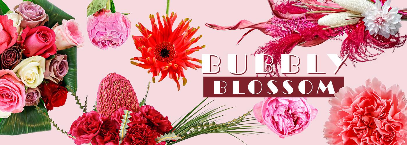 BUBBLY BLOSSOM