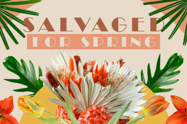 SALVAGED FOR SPRING