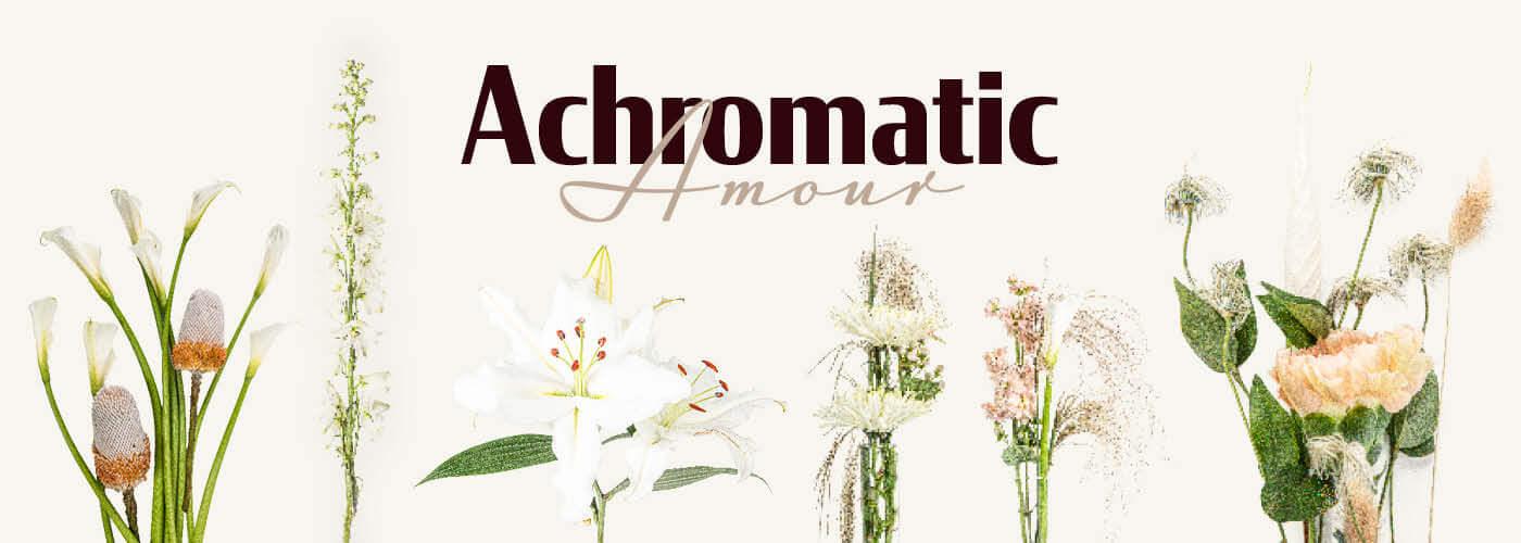 ACHROMTIC AMOUR