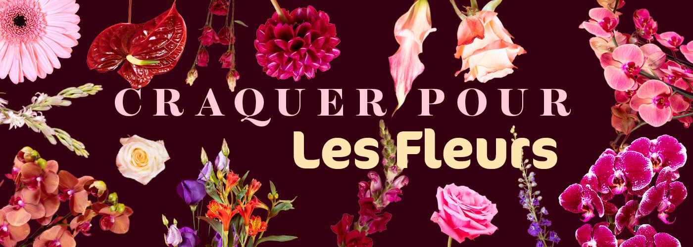 CRAQUER POUR // LES FLEURS